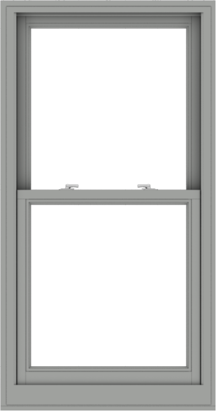 WDMA 30x57 (29.5 x 56.5 inch)  Aluminum Single Double Hung Window without Grids-1
