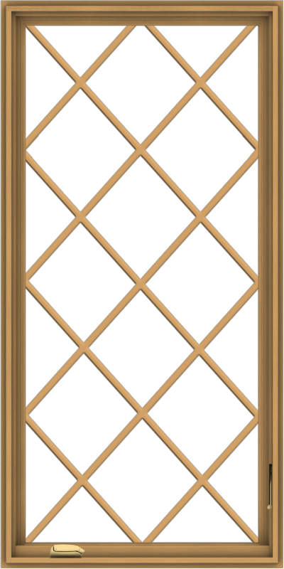 WDMA 30x60 (29.5 x 59.5 inch) Pine Wood Dark Grey Aluminum Crank out Casement Window without Grids with Diamond Grills
