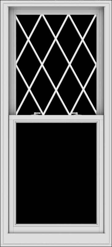 WDMA 30x66 (29.5 x 65.5 inch)  Aluminum Single Double Hung Window with Diamond Grids