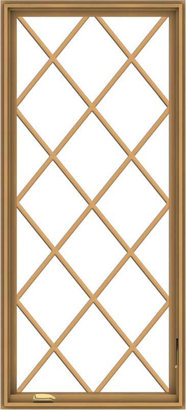 WDMA 30x66 (29.5 x 65.5 inch) Pine Wood Dark Grey Aluminum Crank out Casement Window without Grids with Diamond Grills