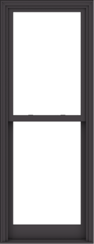 WDMA 30x78 (29.5 x 77.5 inch)  Aluminum Single Hung Double Hung Window without Grids-3