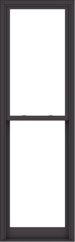 WDMA 32x102 (31.5 x 101.5 inch)  Aluminum Single Hung Double Hung Window without Grids-3