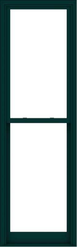 WDMA 32x102 (31.5 x 101.5 inch)  Aluminum Single Hung Double Hung Window without Grids-5
