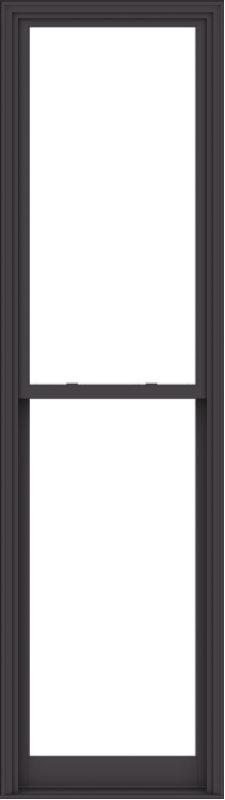 WDMA 32x114 (31.5 x 113.5 inch)  Aluminum Single Hung Double Hung Window without Grids-3
