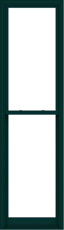 WDMA 32x114 (31.5 x 113.5 inch)  Aluminum Single Hung Double Hung Window without Grids-5