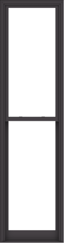 WDMA 32x120 (31.5 x 119.5 inch)  Aluminum Single Hung Double Hung Window without Grids-3