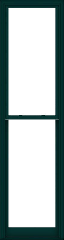 WDMA 32x120 (31.5 x 119.5 inch)  Aluminum Single Hung Double Hung Window without Grids-5
