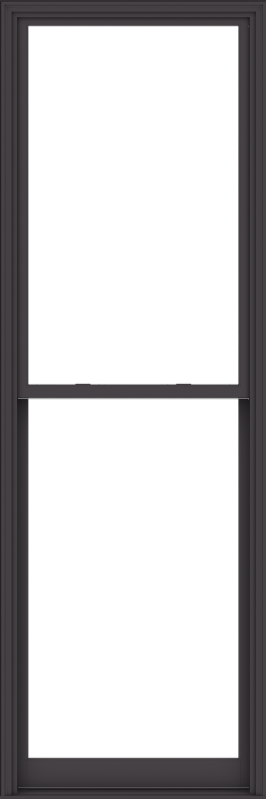 WDMA 40x120 (39.5 x 119.5 inch)  Aluminum Single Hung Double Hung Window without Grids-3