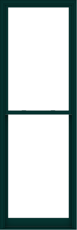 WDMA 40x120 (39.5 x 119.5 inch)  Aluminum Single Hung Double Hung Window without Grids-5
