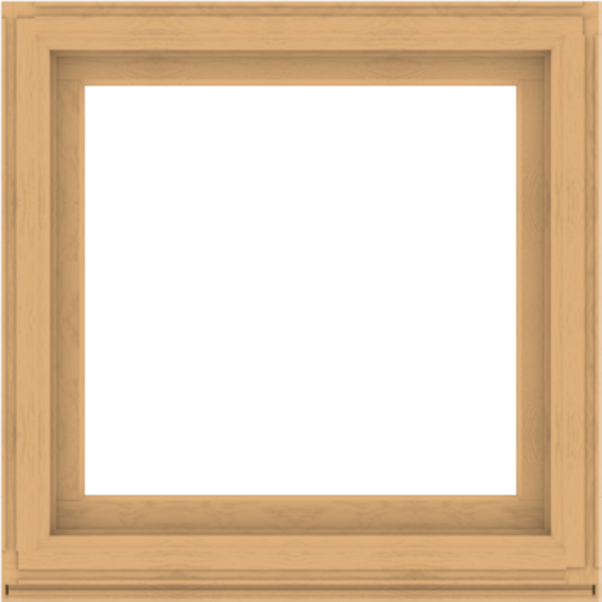 WDMA 40x40 (39.5 x 39.5 inch) Composite Wood Aluminum-Clad Picture Window without Grids-3