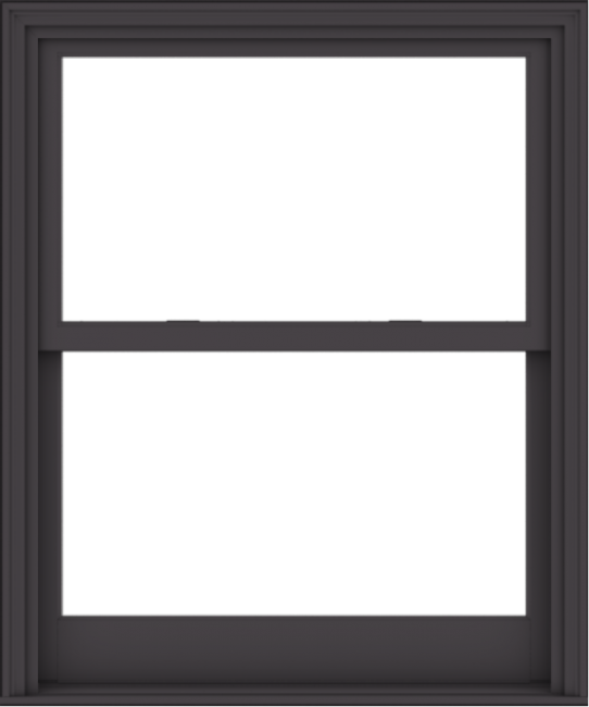 WDMA 40x48 (39.5 x 47.5 inch)  Aluminum Single Hung Double Hung Window without Grids-3
