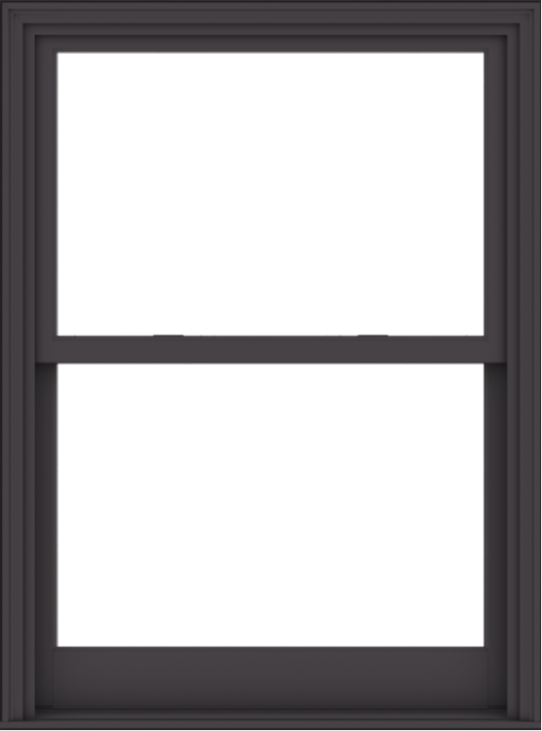 WDMA 40x54 (39.5 x 53.5 inch)  Aluminum Single Hung Double Hung Window without Grids-3