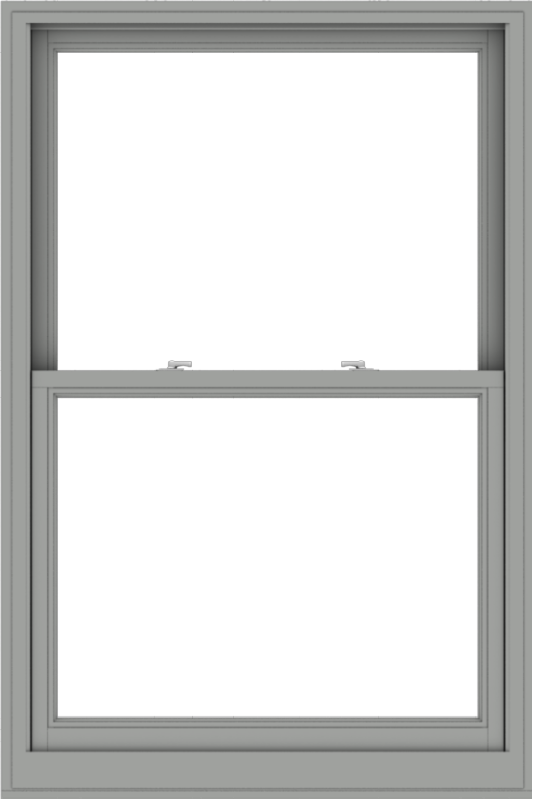 WDMA 40x60 (39.5 x 59.5 inch)  Aluminum Single Double Hung Window without Grids-1