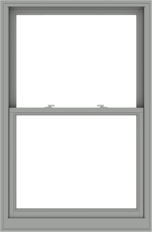 WDMA 40x61 (39.5 x 60.5 inch)  Aluminum Single Double Hung Window without Grids-1