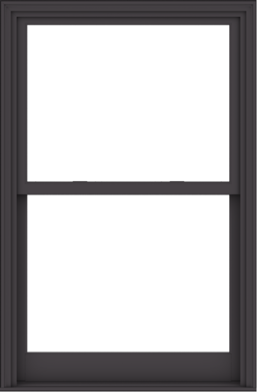 WDMA 40x61 (39.5 x 60.5 inch)  Aluminum Single Hung Double Hung Window without Grids-3