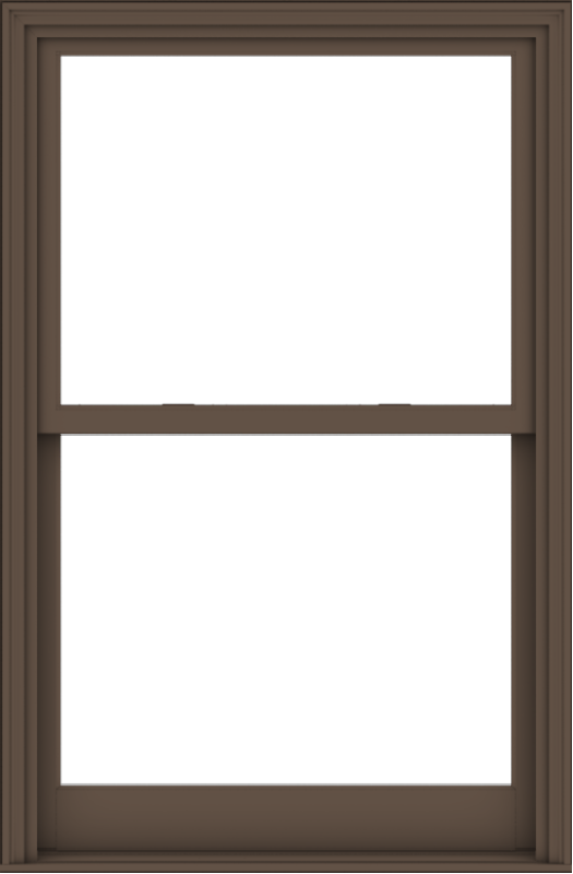 WDMA 40x61 (39.5 x 60.5 inch)  Aluminum Single Hung Double Hung Window without Grids-4