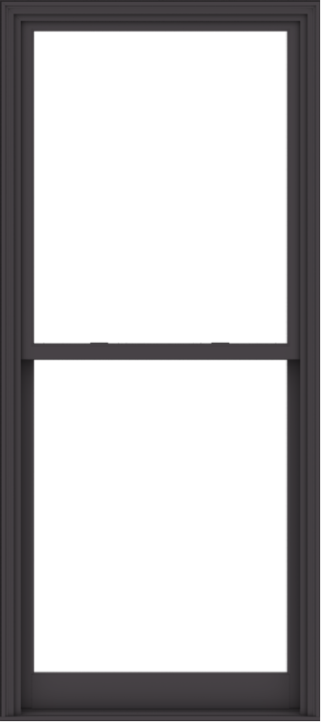 WDMA 40x90 (39.5 x 89.5 inch)  Aluminum Single Hung Double Hung Window without Grids-3