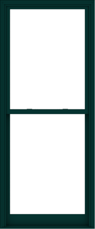 WDMA 40x96 (39.5 x 95.5 inch)  Aluminum Single Hung Double Hung Window without Grids-5