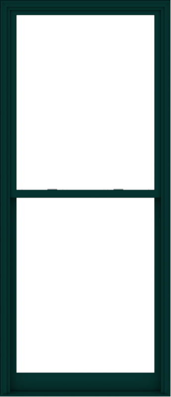 WDMA 44x102 (43.5 x 101.5 inch)  Aluminum Single Hung Double Hung Window without Grids-5