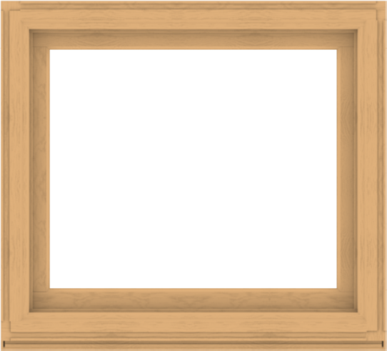 WDMA 44x40 (43.5 x 39.5 inch) Composite Wood Aluminum-Clad Picture Window without Grids-3
