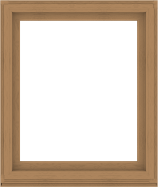 WDMA 44x52 (43.5 x 51.5 inch) Composite Wood Aluminum-Clad Picture Window without Grids-1