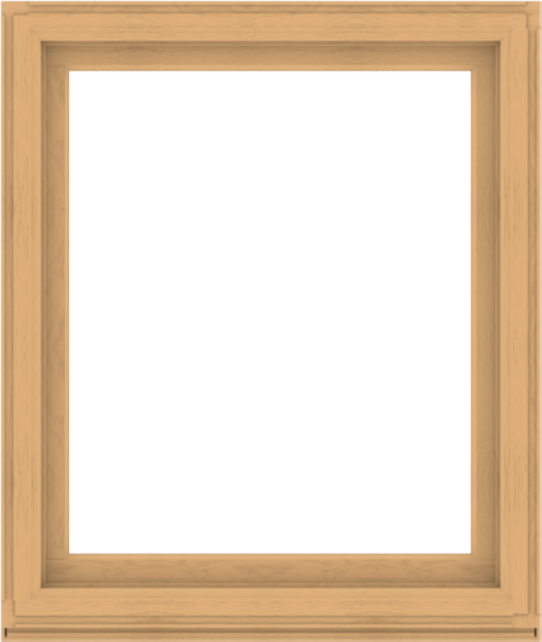 WDMA 44x52 (43.5 x 51.5 inch) Composite Wood Aluminum-Clad Picture Window without Grids-3