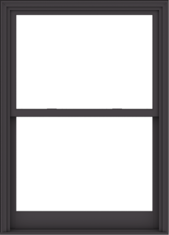 WDMA 44x61 (43.5 x 60.5 inch)  Aluminum Single Hung Double Hung Window without Grids-3