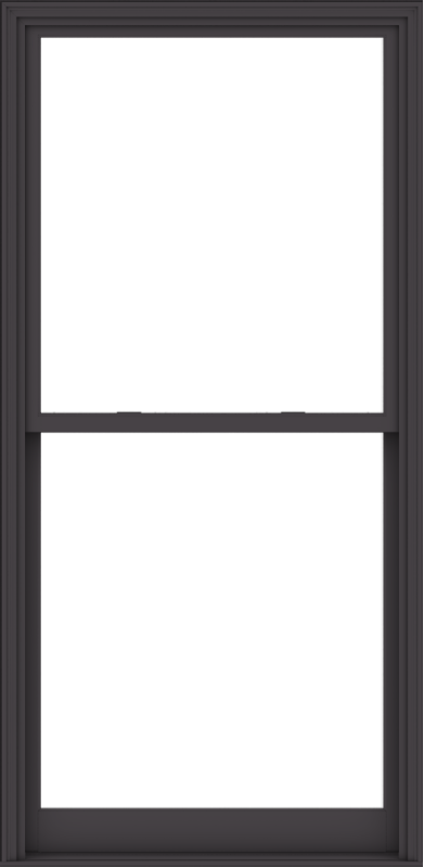 WDMA 44x90 (43.5 x 89.5 inch)  Aluminum Single Hung Double Hung Window without Grids-3