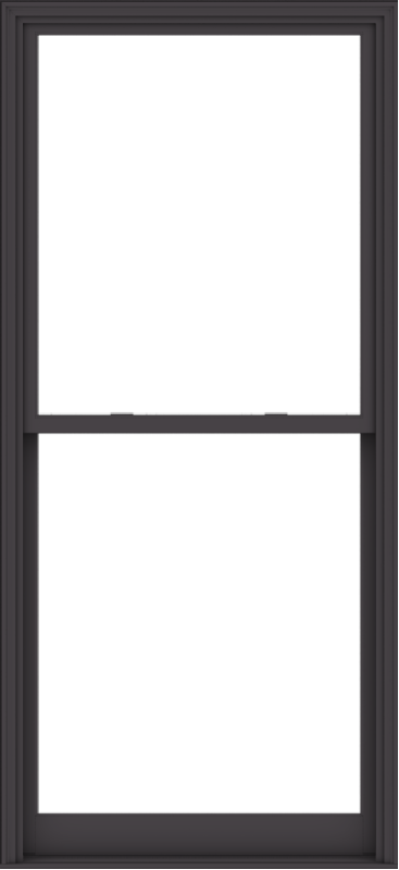 WDMA 44x96 (43.5 x 95.5 inch)  Aluminum Single Hung Double Hung Window without Grids-3