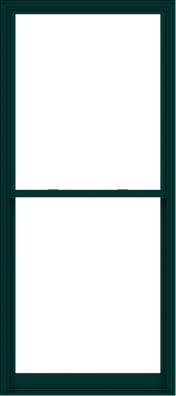 WDMA 48x108 (47.5 x 107.5 inch)  Aluminum Single Hung Double Hung Window without Grids-5