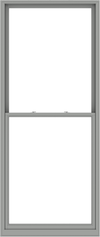 WDMA 48x114 (47.5 x 113.5 inch)  Aluminum Single Double Hung Window without Grids-1