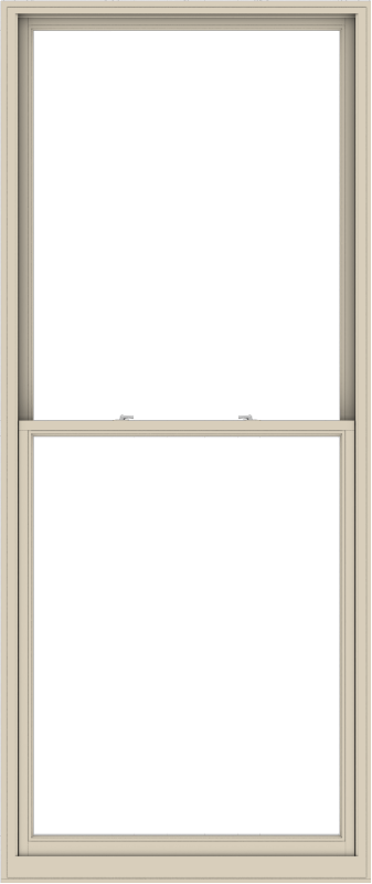 WDMA 48x114 (47.5 x 113.5 inch)  Aluminum Single Hung Double Hung Window without Grids-2