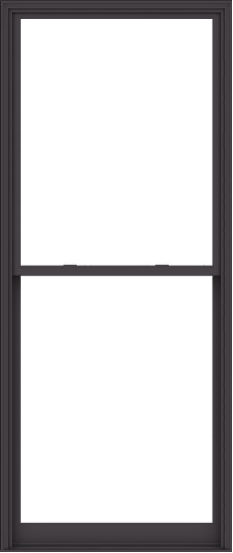 WDMA 48x114 (47.5 x 113.5 inch)  Aluminum Single Hung Double Hung Window without Grids-3