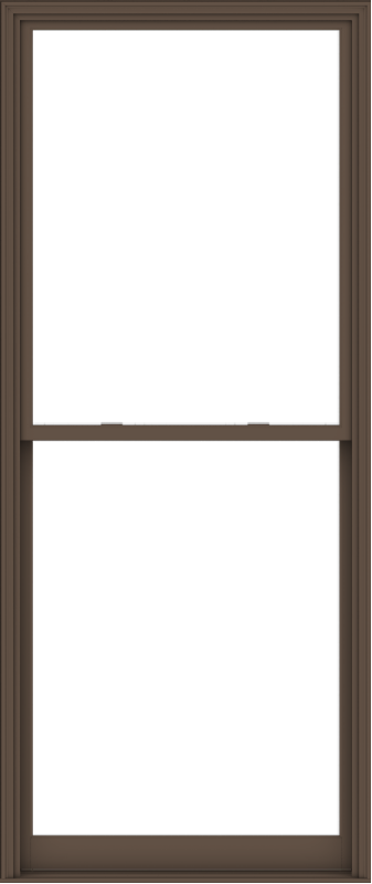 WDMA 48x114 (47.5 x 113.5 inch)  Aluminum Single Hung Double Hung Window without Grids-4