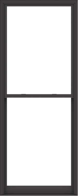 WDMA 48x120 (47.5 x 119.5 inch)  Aluminum Single Hung Double Hung Window without Grids-3