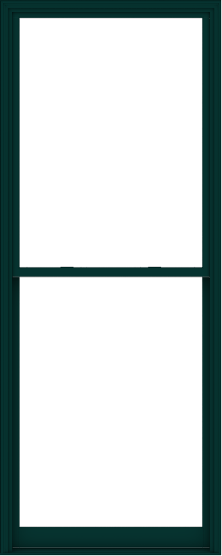WDMA 48x120 (47.5 x 119.5 inch)  Aluminum Single Hung Double Hung Window without Grids-5