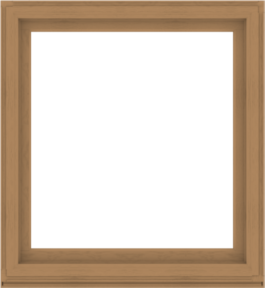 WDMA 48x52 (47.5 x 51.5 inch) Composite Wood Aluminum-Clad Picture Window without Grids-1