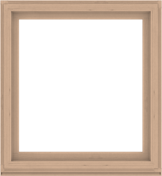 WDMA 48x52 (47.5 x 51.5 inch) Composite Wood Aluminum-Clad Picture Window without Grids-2