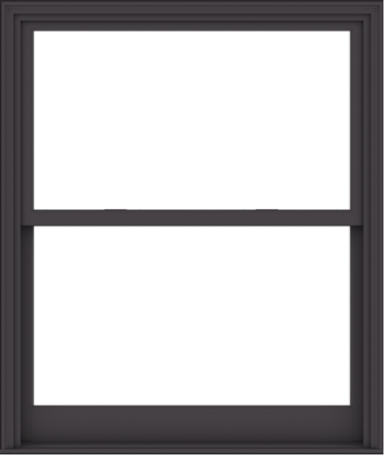 WDMA 48x57 (47.5 x 56.5 inch)  Aluminum Single Hung Double Hung Window without Grids-3