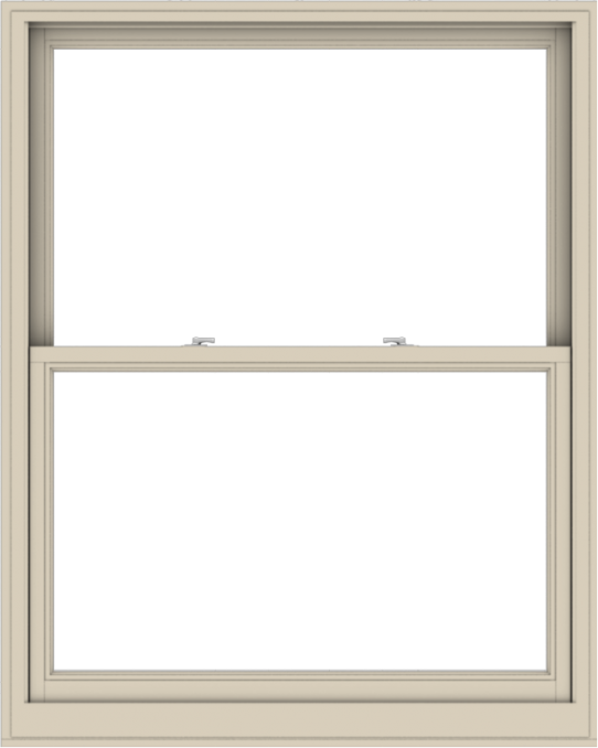 WDMA 48x60 (47.5 x 59.5 inch)  Aluminum Single Hung Double Hung Window without Grids-2