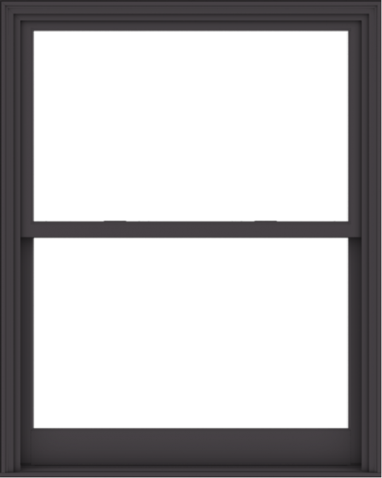 WDMA 48x60 (47.5 x 59.5 inch)  Aluminum Single Hung Double Hung Window without Grids-3