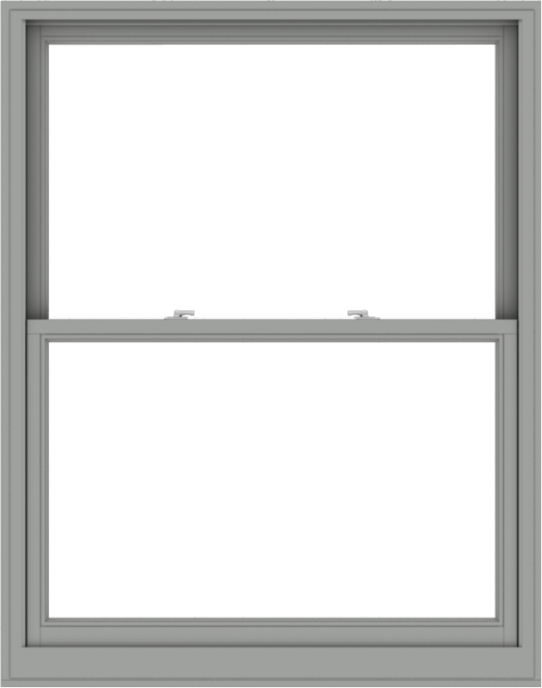 WDMA 48x61 (47.5 x 60.5 inch)  Aluminum Single Double Hung Window without Grids-1