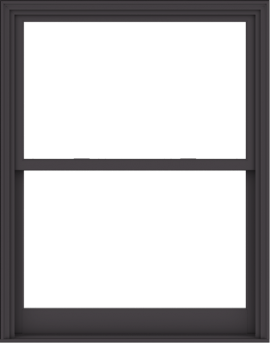WDMA 48x61 (47.5 x 60.5 inch)  Aluminum Single Hung Double Hung Window without Grids-3