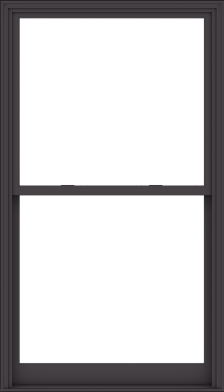 WDMA 48x84 (47.5 x 83.5 inch)  Aluminum Single Hung Double Hung Window without Grids-3