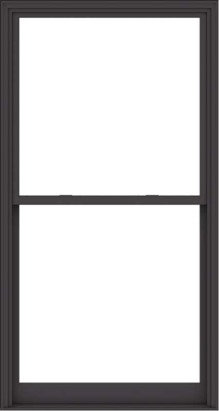 WDMA 48x90 (47.5 x 89.5 inch)  Aluminum Single Hung Double Hung Window without Grids-3