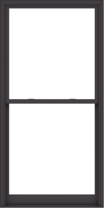 WDMA 48x96 (47.5 x 95.5 inch)  Aluminum Single Hung Double Hung Window without Grids-3