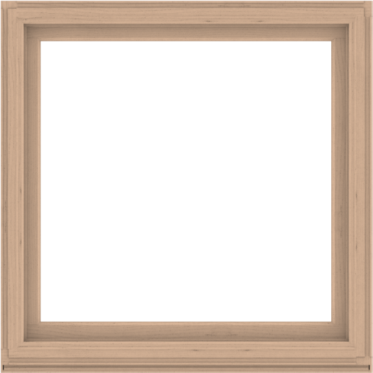 WDMA 52x52 (51.5 x 51.5 inch) Composite Wood Aluminum-Clad Picture Window without Grids-2