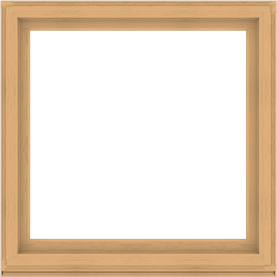 WDMA 52x52 (51.5 x 51.5 inch) Composite Wood Aluminum-Clad Picture Window without Grids-3