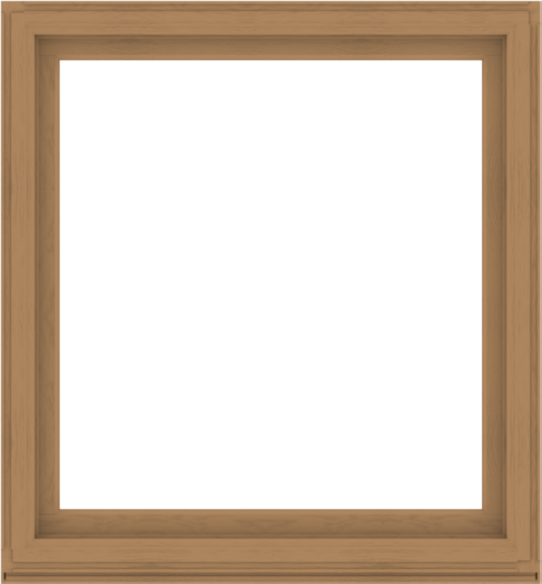 WDMA 52x56 (51.5 x 55.5 inch) Composite Wood Aluminum-Clad Picture Window without Grids-1