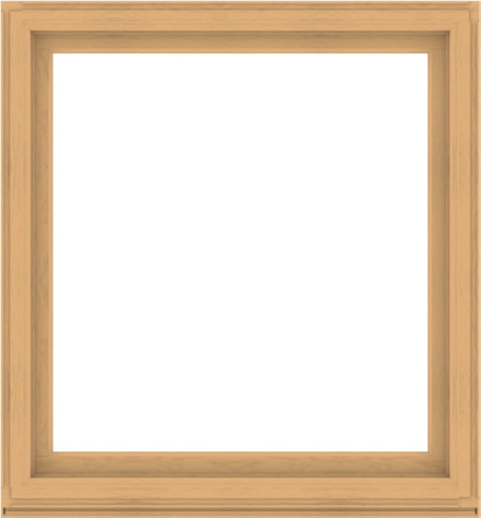 WDMA 52x56 (51.5 x 55.5 inch) Composite Wood Aluminum-Clad Picture Window without Grids-3